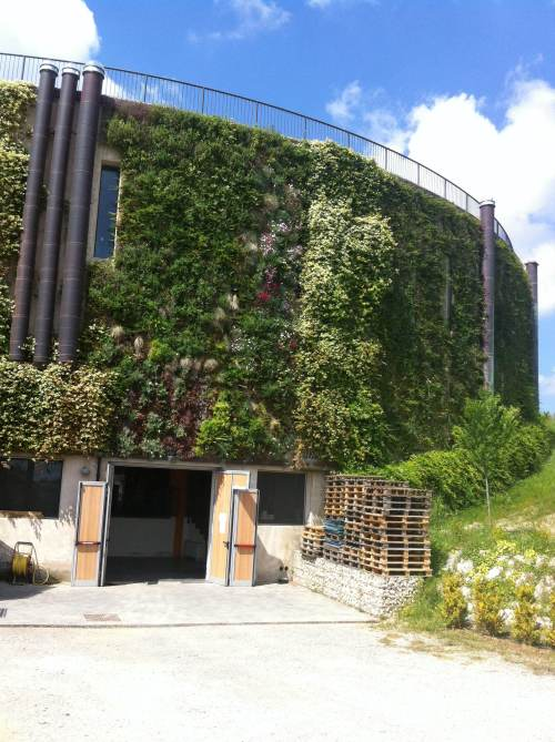 by poliflor - flexiverde green wall cantina Montepulciano Italy - green economy studio baroni